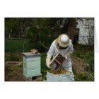Beekeeper Adds Honeybees Card