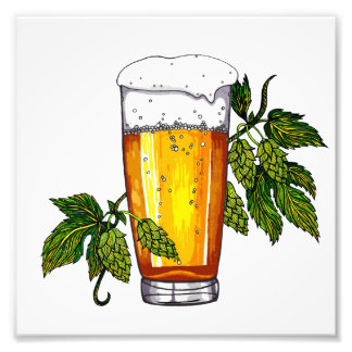 Beer Glass & Hops Photograph
