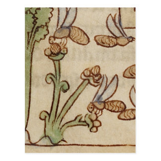 Bees from a Medieval Manuscript Postcard