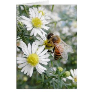 Bees Honey Bee Wildflowers Flowers Daisies Photo Greeting Card