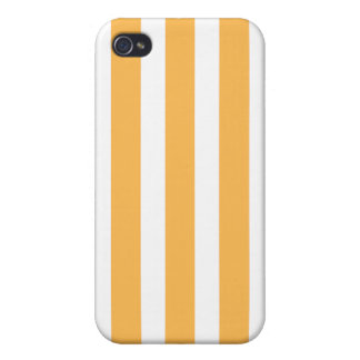 Beeswax Fashion Stripe Iphone 4 Case