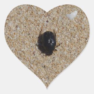 Beetle On Sand Nature Photo Heart Sticker