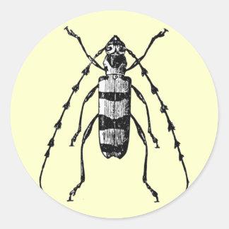 Beetle Classic Round Sticker