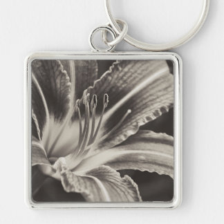 Before the Storm (Platinum) Silver-Colored Square Key Ring