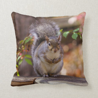 Begging Squirrel Cushion
