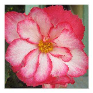 Begonia Red White Flower Bloom 13 Cm X 13 Cm Square Invitation Card