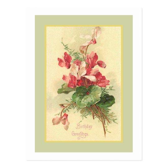 Begonia Vintage Birthday Greetings Postcard