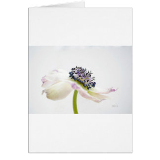 Beguile Greeting Card
