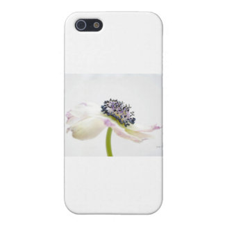 Beguile iPhone 5/5S Cover
