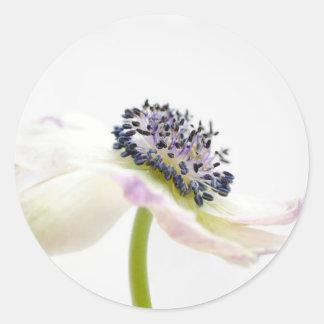 Beguile Round Sticker