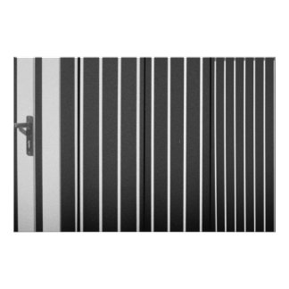 Behind the bars photo print