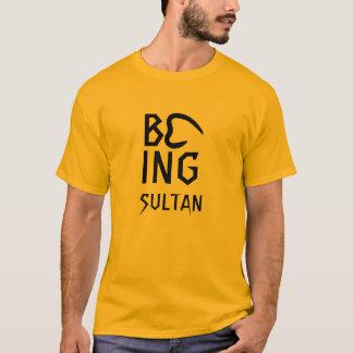 Being Sultan Men's Hanes Nano T-Shirt