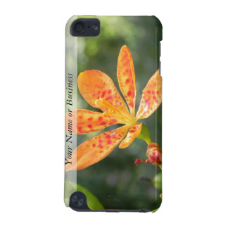 Belamcanda Chinensis Bloom iPod Touch (5th Generation) Case