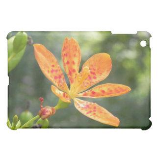 Belamcanda Chinensis Bloom Cover For The iPad Mini
