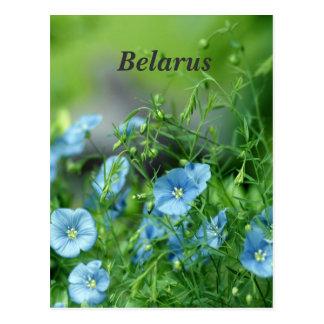 Belarus Flax Postcard