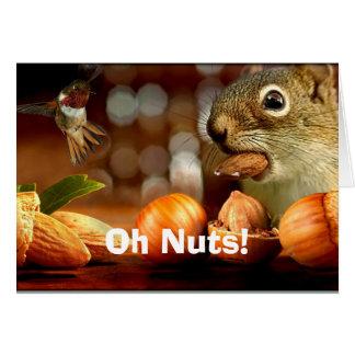 Belated Birthday Squirrel Card