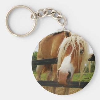 Belgian Draft Horse, Got Carrots? Key Ring