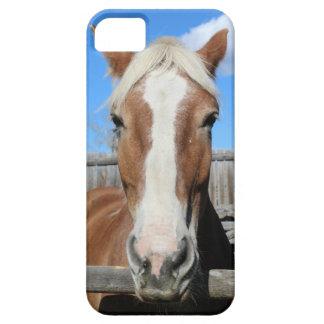 Belgian Draft Horse iPhone 5 Case
