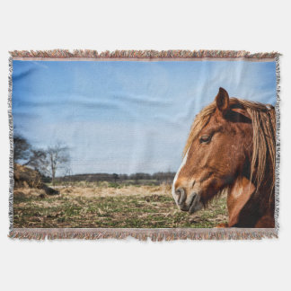 Belgian Horse Head Throw Blanket