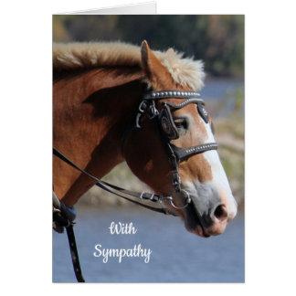 Belgian Horse Sympathy Card