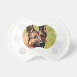 Belgian Malinois German Shepherd Dummy