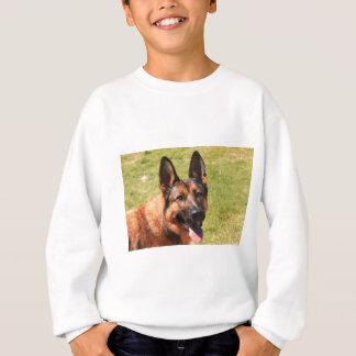 Belgian Malinois German Shepherd Sweatshirt