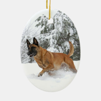 Belgian Malinois in Snow ornament 2