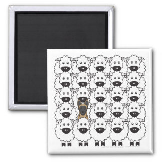 Belgian Malinois in the Sheep Square Magnet