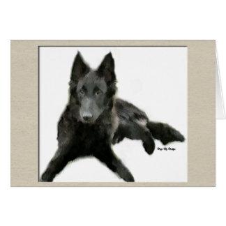 Belgian Sheepdog Gifts Card