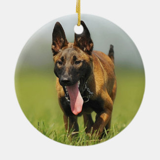 Belgian Shepherd Dog Ceramic Ornament