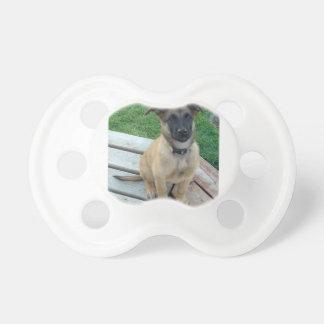 Belgian Shepherd Malinois Dog Dummy
