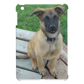 Belgian Shepherd Malinois Dog iPad Mini Cases