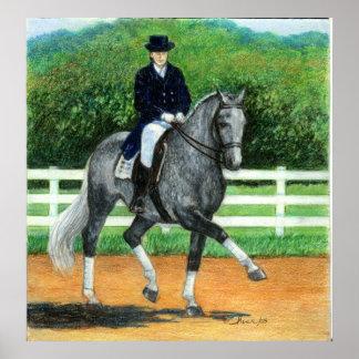 Belgian Warmblood Dressage Horse Portrait Poster