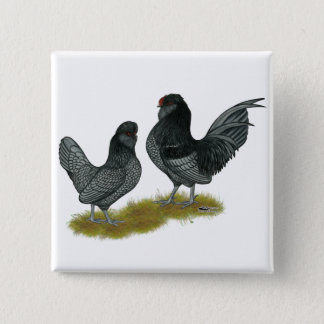 Belgian Watermaal Bantams 15 Cm Square Badge