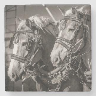 Belgium draught horses stone coaster