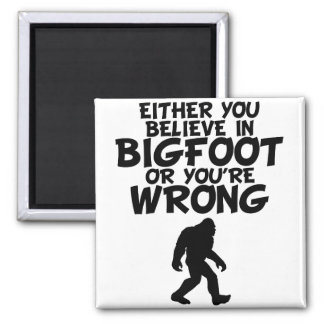 Believe In Bigfoot Or You're Wrong Magnet