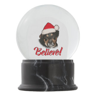 Believe! in Santa Funny Santa Lab Aussie Pet Dog Snow Globe
