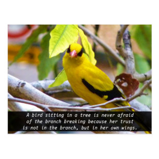 Believe in yourself, Yellow Bird Perched on Branch Postcard