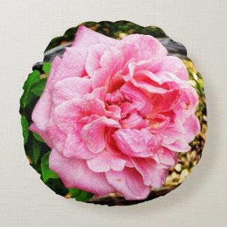 Belinda's Dream Rose Pillow