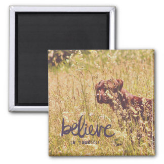 Belive In Yourself, Dog in Tall Grass Magnet