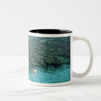 Belize, Barrier Reef, Lighthouse Reef, Blue Two-Tone Mug