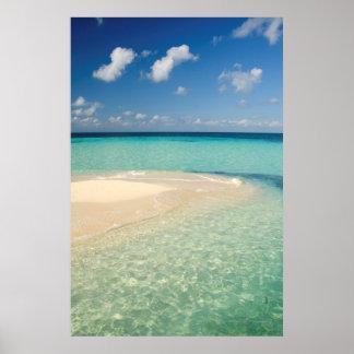 Belize, Caribbean Sea. Goff Caye, A Small Island Poster