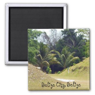 Belize City, Belize Magnet