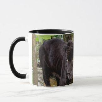 Belize City Zoo. Black panther Mug