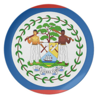 belize country flag plate