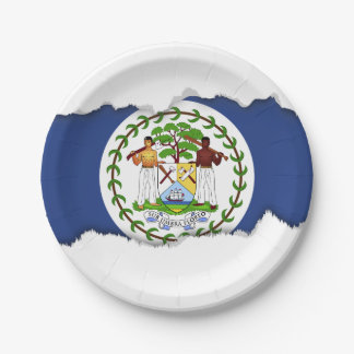 Belize Flag 7 Inch Paper Plate
