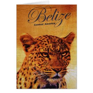 Belize Jaguar Card