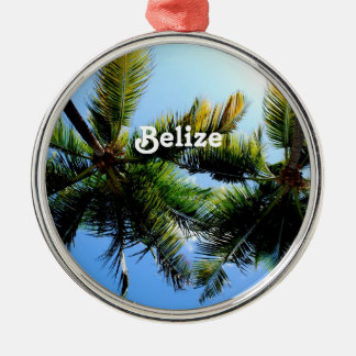 Belize Palm Trees Metal Ornament