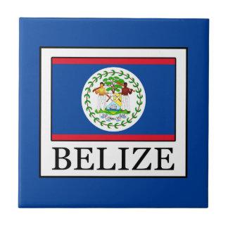 Belize Tile