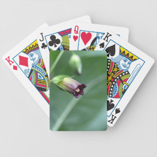 Belladonna or deadly nightshade (Atropa belladonna Bicycle Playing Cards